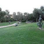 Overview of Sculptures Garden