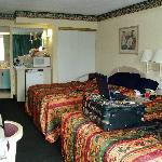 Room 243, Pet Friendly room w/ microwave, fridge & internet access