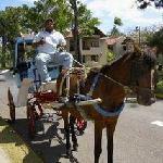 Transportation around complex - Domingo