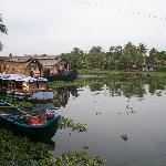 Backwaters right at your doorstep