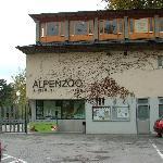Alpenzoo Entrance