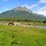 Parque Nacional Tierra del Fuego: vistas desde el tren del fin del mundo