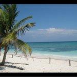 Sensimar Seaside Suites & Spa Photo