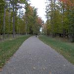 cycling the bike path in the area