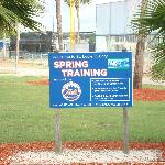 Welcome to Spring Training!