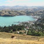 View of Akaroa from top of hill