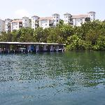 Condos from the lake.