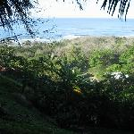 view from hammock outside our room