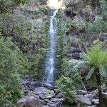 Erskine Falls, nr Lorne