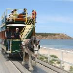 Horse drawn tram from Victor Harbour across the causeway to Granite Island