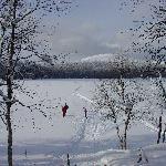 Langlauf II beim Keimiojärvi im Nationalpark