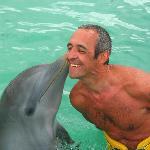 bisous du dauphin