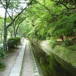 Along the Philosopher's Walk