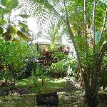 Outside view - gazebo