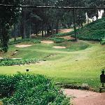 golf - fabulous but not cheap