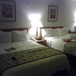 Nice and comfortable beds and linens