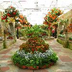 floral display building