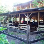 horse barn 3 rooms above