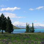Foto de YHA Lake Tekapo