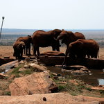 The watering hole at Voi Lodge