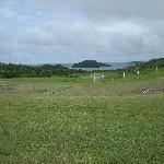 The grass strip runway at Vanua Balavu