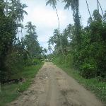 The main/only hiway along the island