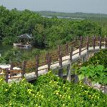 The Bridge to the Riverside