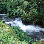 Caldera River afluent