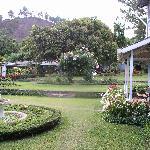 Panamonte Gardens