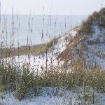 Sand dunes on the gulf