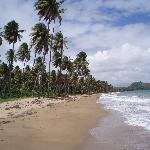 Lucia Beach