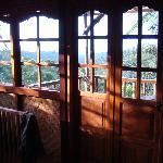 Morning views