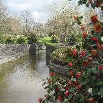 Park in town of Adare