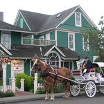 Horse Drawn Carriage at the Shelburne