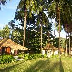 les bungalows 1