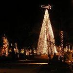 Un arbre de Noël spectaculaire