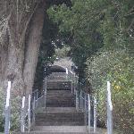 Cratloe grotto