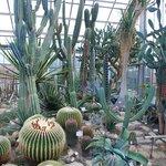 Kiel Botanical Gardens