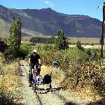 Rail cycler on the Old Patagonian Express tracks, Esquel