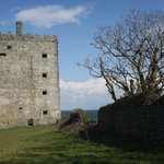 Carrigaholt Castle Photo