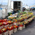 Marseille Flower Market Day