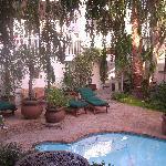 El jardin y la piscina