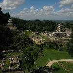The ruins at Palenque - breath-taking!