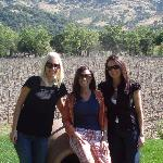 At Stags Leap Wine Cellars