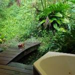 This is the little koi pond with the outside spa in the corner