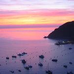 Catalina Island Harbor at dawn from the Zane Grey Hotel