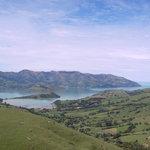 NZ Akoroa