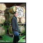 Wine Barrels at Hyatt Winery