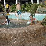 Arizona's swimming pool
