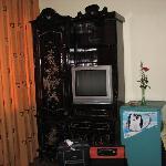 TV & fridge